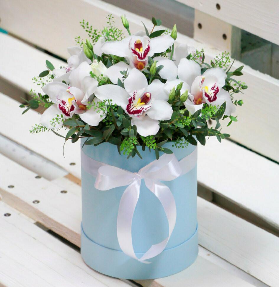 Аквабокс с орхидеями и зеленью