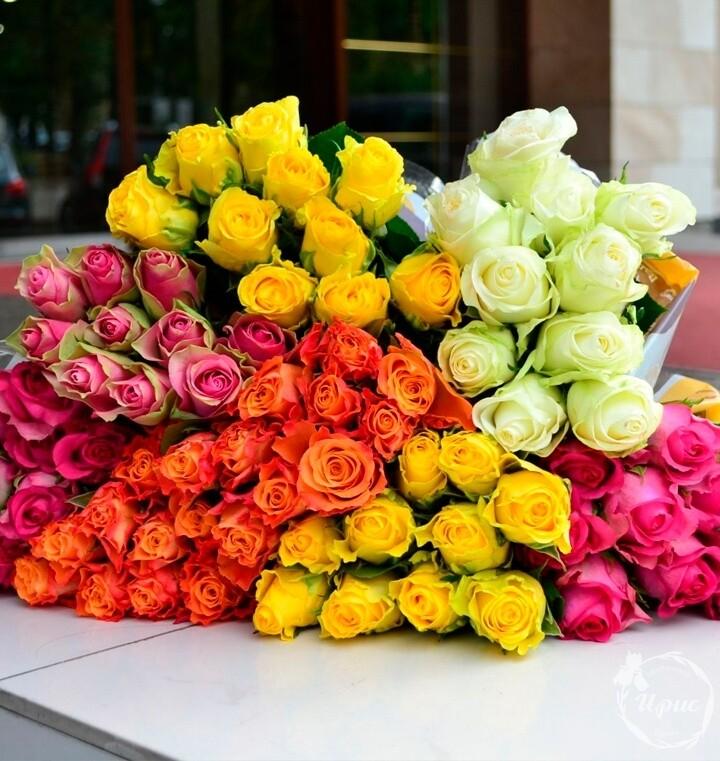 Роза кения 50 см, ассорти