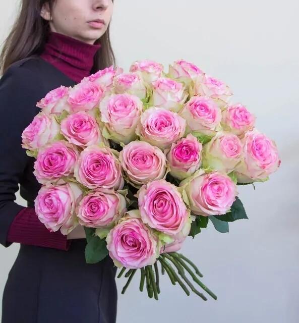 """25 роз """"Эсперанс"""" 60-70 см"""