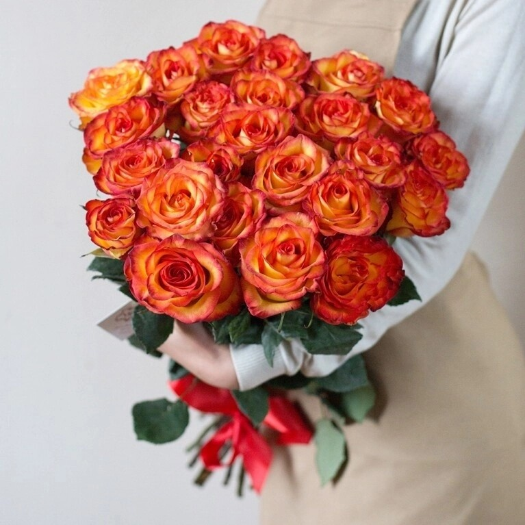 """25 роз """"Хай Меджик"""" 60-70 см"""