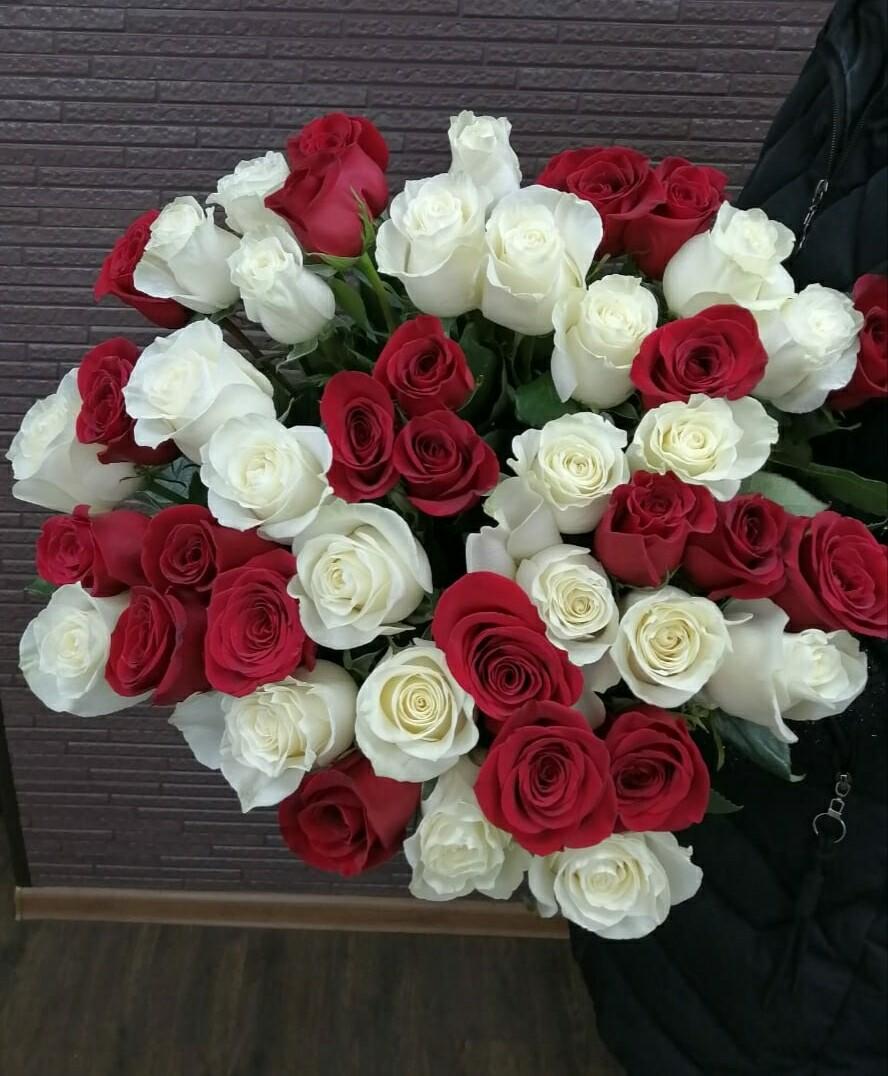 45 красно белых роз, высота 60 см