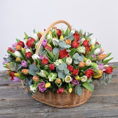 151 тюльпан в корзине с эвкалиптом