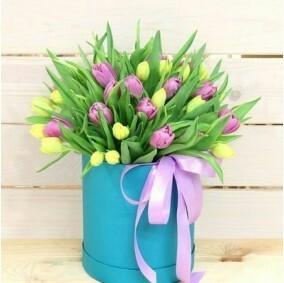 51 тюльпан в аквабоксе