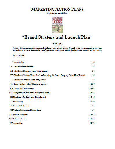 Branding Strategy And Launch Plan Template