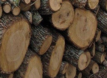 Wood, Post Oak Chip 1lb