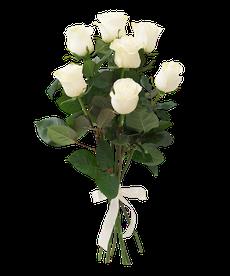 Букет из 7 белых роз vendela
