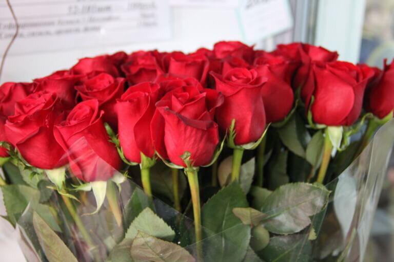 Роза Red Paris