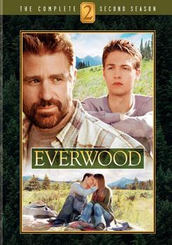 Everwood: The Complete Second Season - DVD - Used
