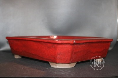 Mirt Pots - 34.8cm; Glazed; Rectangle; Red; Chicken blood