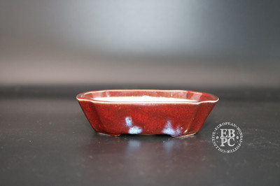 Terre en Vadrouille - 10.5cm; Small Shohin; Rectangle; Glazed; Reds;