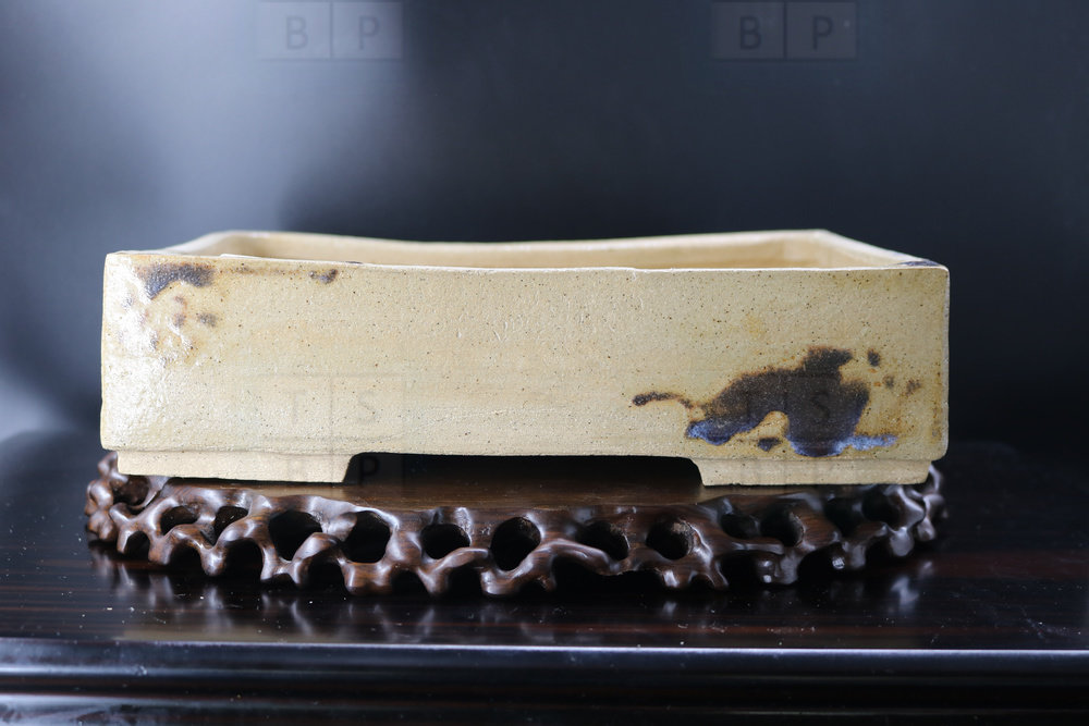 Holvila Bonsai Pot - 26.5cm; glazed; rectangle; brown, beige