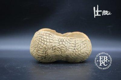 Holvila - 'Dragonskin'; 11.7cm; rectangle; shohin; textured finish