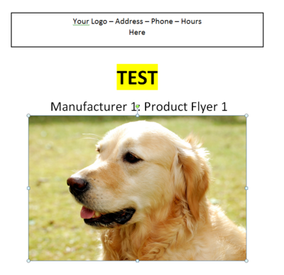Manufacturer 1 - Product Flyer 1