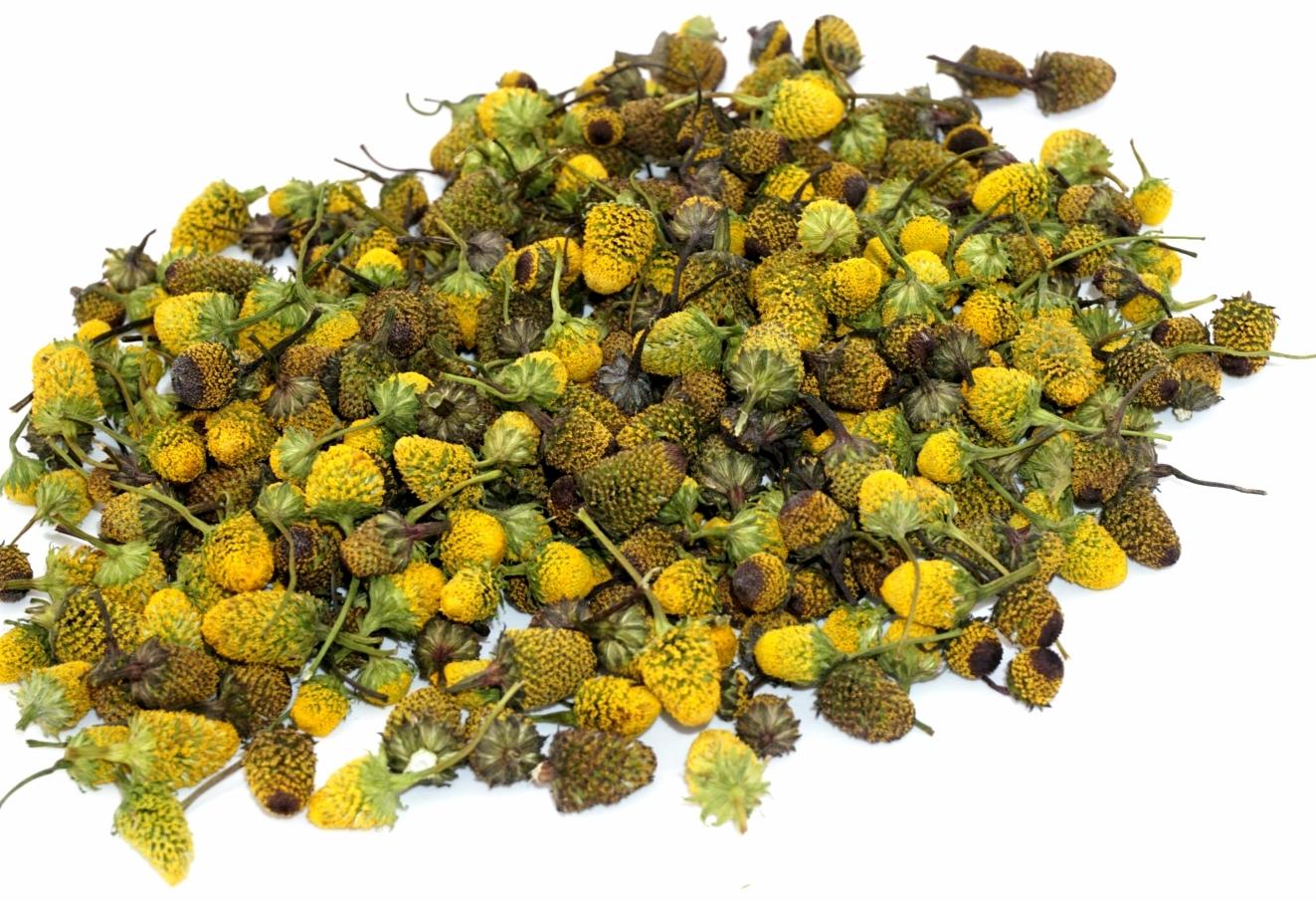 Dried Buzz Button Flowers. ~150-200 flowers. 00024