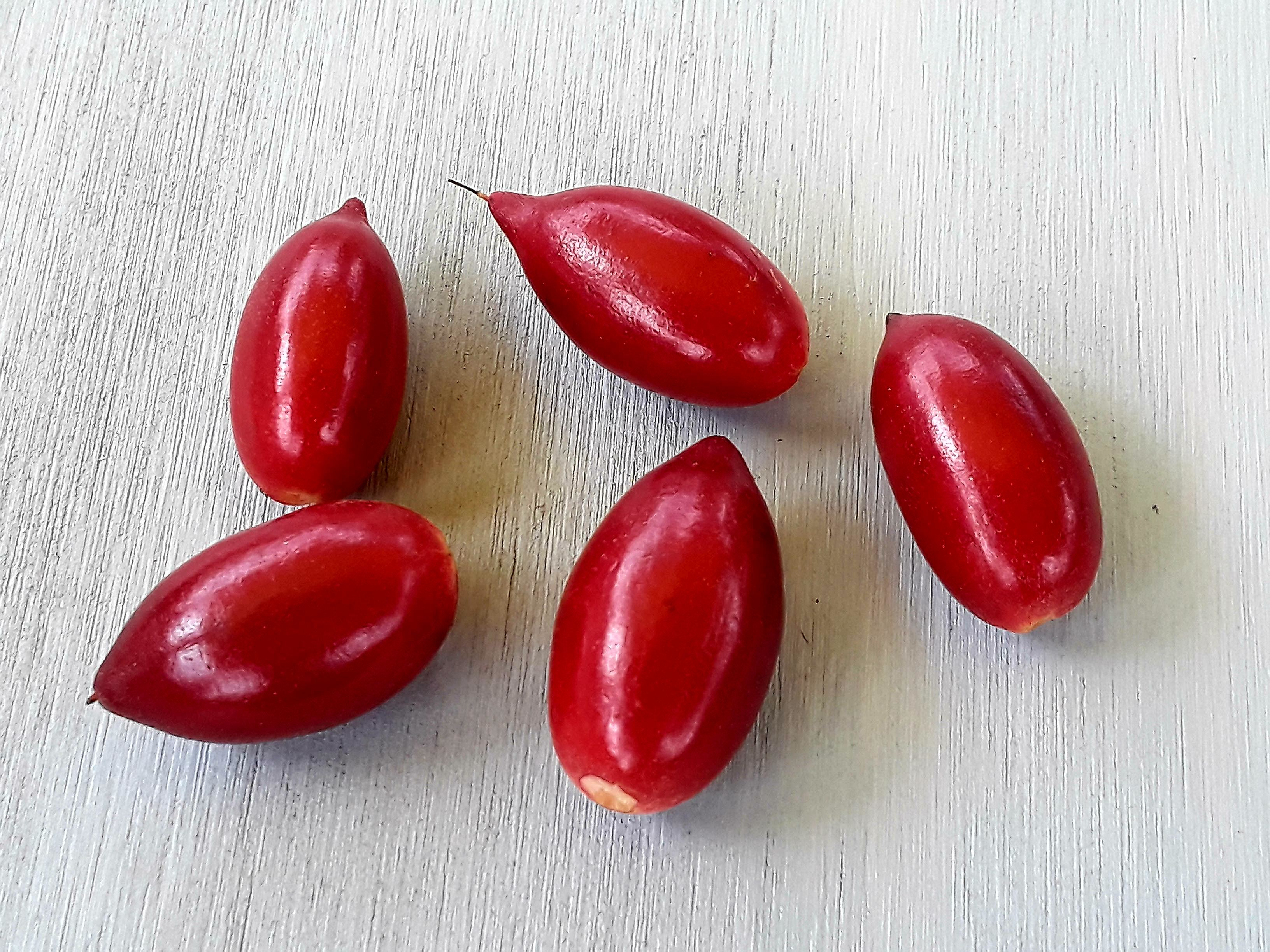 Fresh Miracle berries (Synsepalum dulcificum) Taste altering miracle fruit. 30 berries. 00015