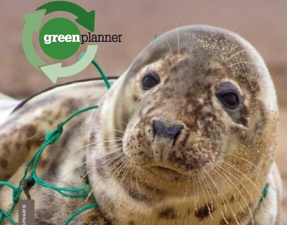 Green Planner 2020