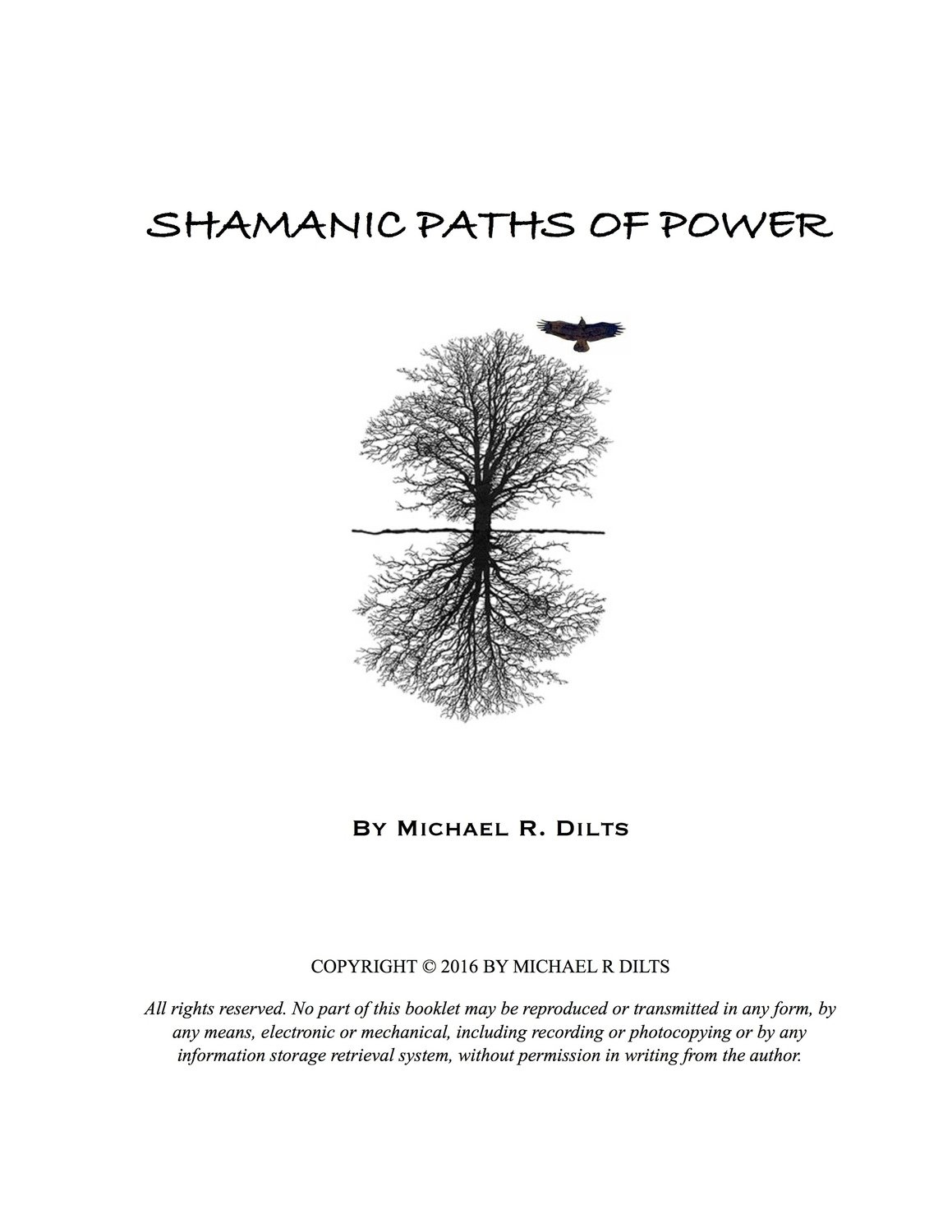 Shamanic Paths of Power by Michael R. Dilts