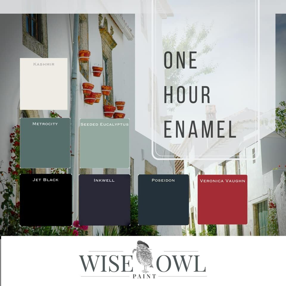 WISE OWL ONE HOUR ENAMEL PAINT