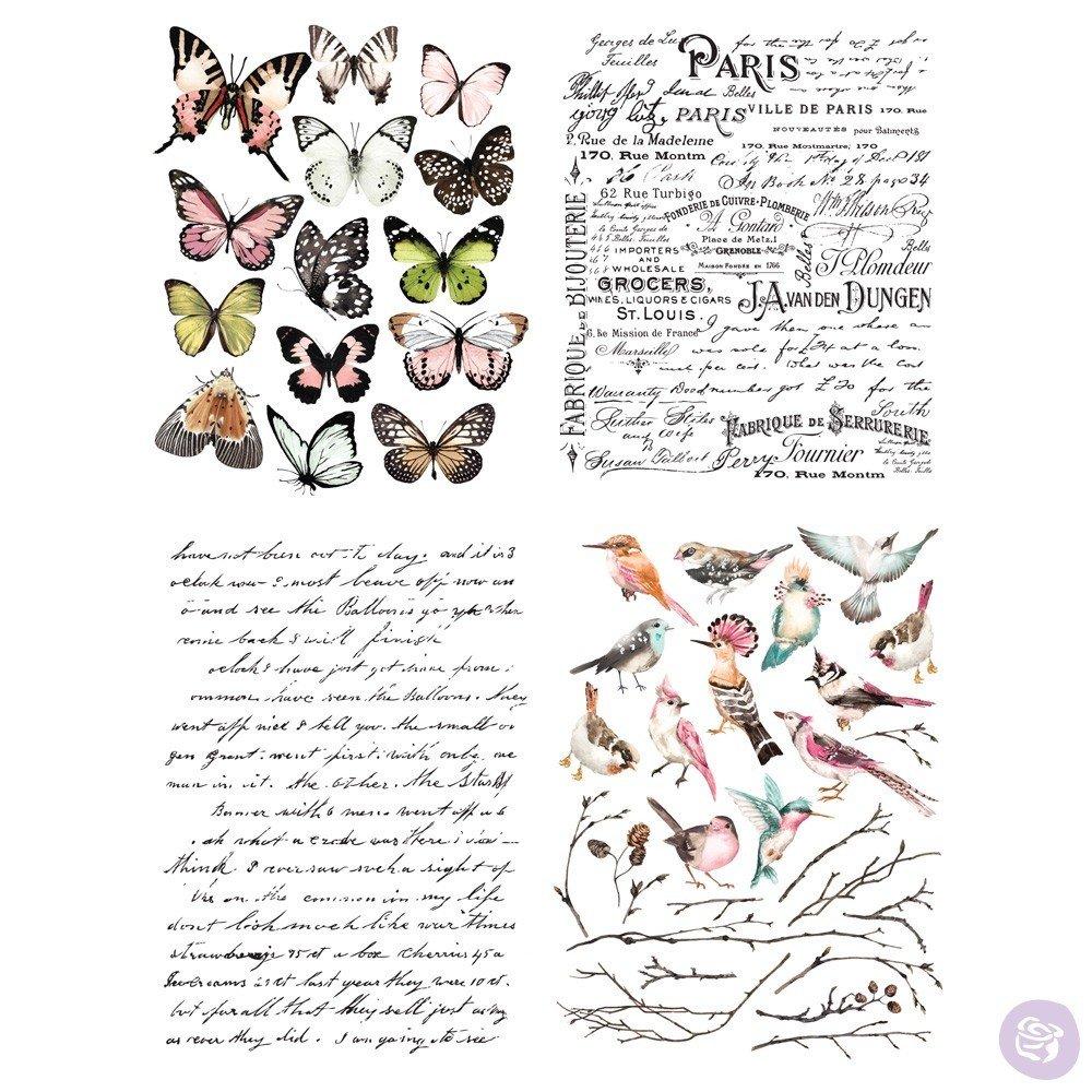 Parisian Butterflies #635466