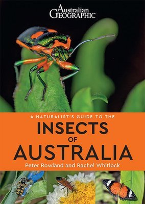 Naturalist's Guide to Insects of Australia (Australian Geographic)