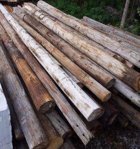 Used Utility Poles