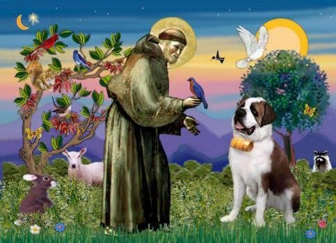 Guided Meditation - Receiving Intuitive Guidance from Sacred Heart of St. Francis