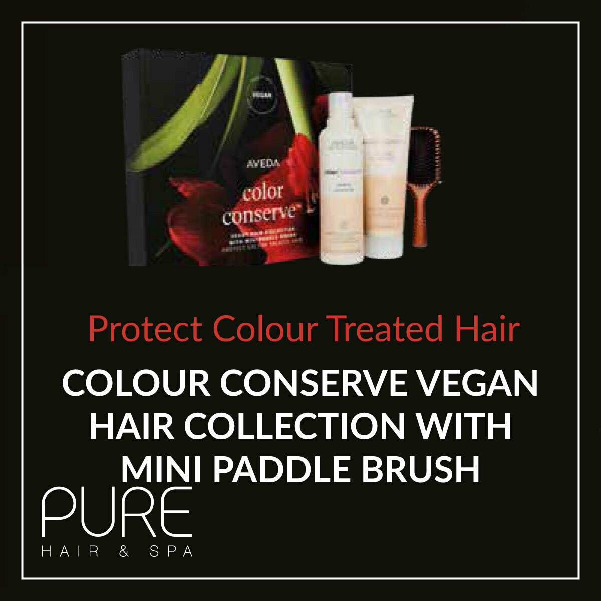 Aveda Colour Conserve Hair Care Gift Set.
