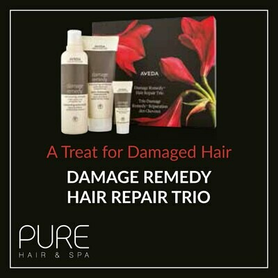 Aveda Damage Remedy Hair Care Gift Set.