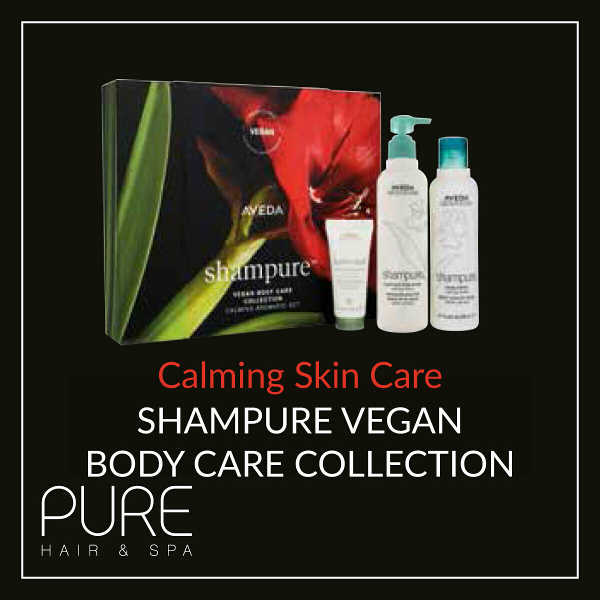 Aveda Shampure Body Care Gift Set.