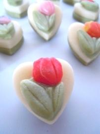 Sweet Tulips 00167