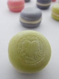 Floral Flavour Macarons 00187
