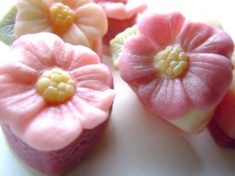 Delicate pink petals detail.