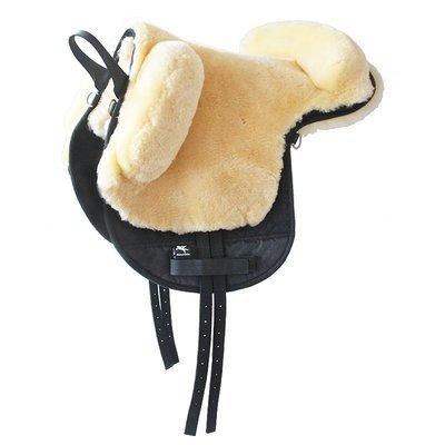 Fellsattel Pony