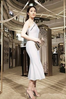 Stretch Denim Zipper Dress