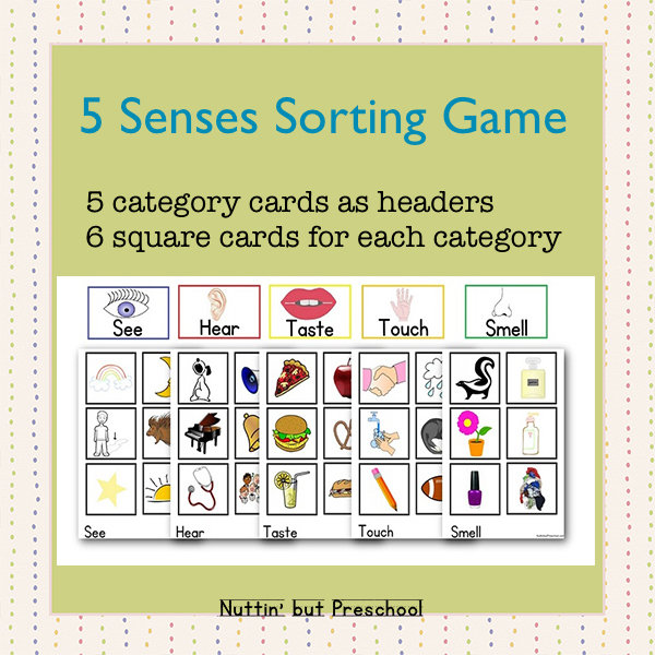 5 Senses Sorting Game 0028