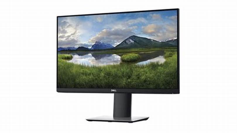 """Dell 24"""" Monitor P2419H"""