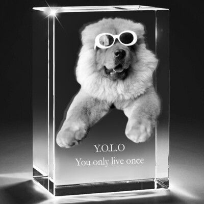 3D Picture Glass Block  - Portrait - 10cm x 8cm x 8cm