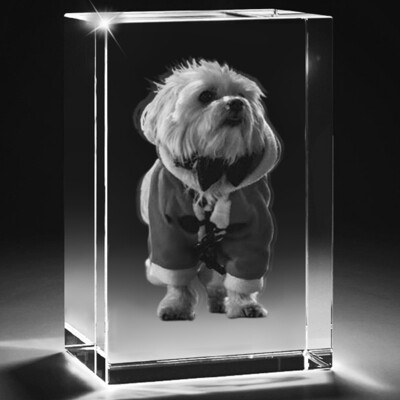 3d Pet Photo Crystal  Block   - 10cm x 8cm x 8cm
