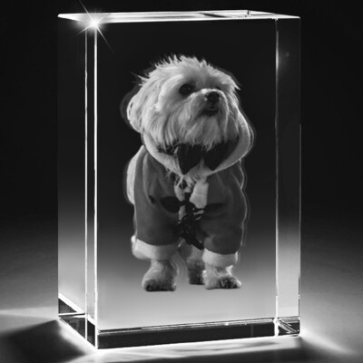 3D Pet Photo Crystal with bevelled edges - Large  - 10cm x 8cm