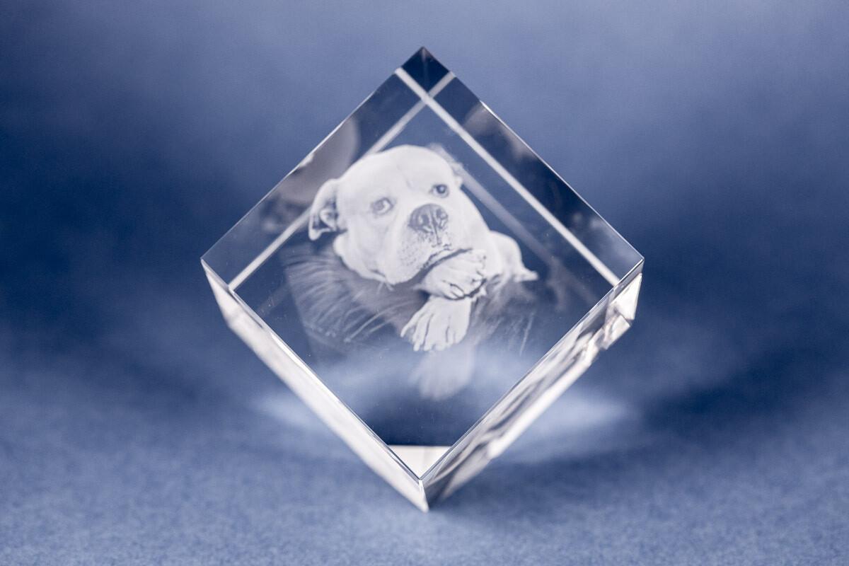 Pet Photo Crystal Cube - Diamond -Large - 3D/2D