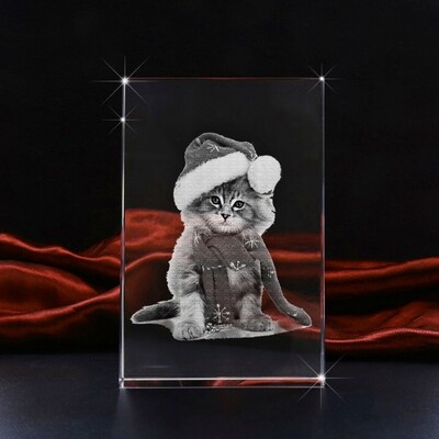 Pet Portrait Photo Crystal – Large