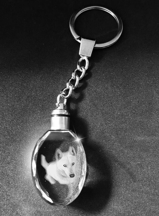 Memorial Photo Crystal Keyring with LED Lights - Oval