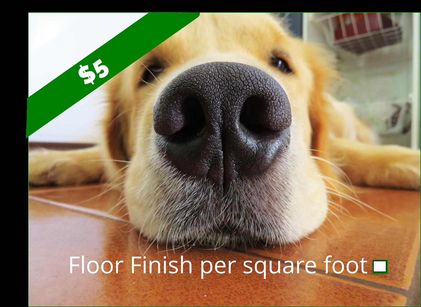 Floor Finish per square foot