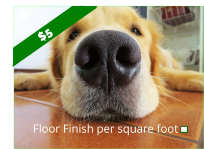 Floor Finish per square foot