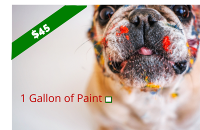 One Gallon of Paint