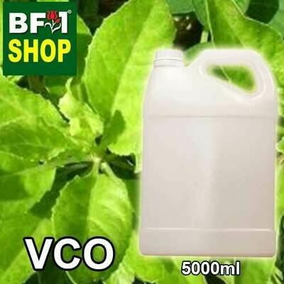 VCO - Daun Dewa ( Sambung Nyawa ) Virgin Carrier Oil - 5000ml