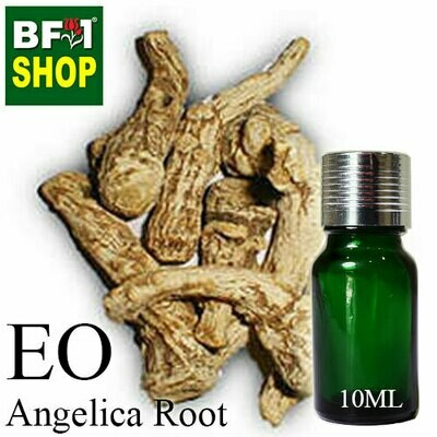 Essential Oil - Angelica Root - 10ml