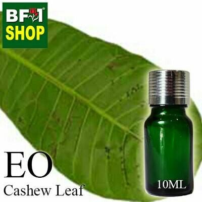 Essential Oil - Cashew Leaf ( Anacardium Occidentale ) - 10ml