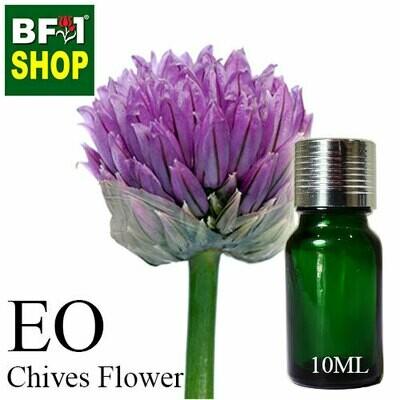 Essential Oil - Chive ( Allium schoenoprasum L ) - 10ml