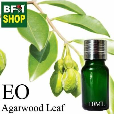 Essential Oil - Agarwood Leaf - 10ml